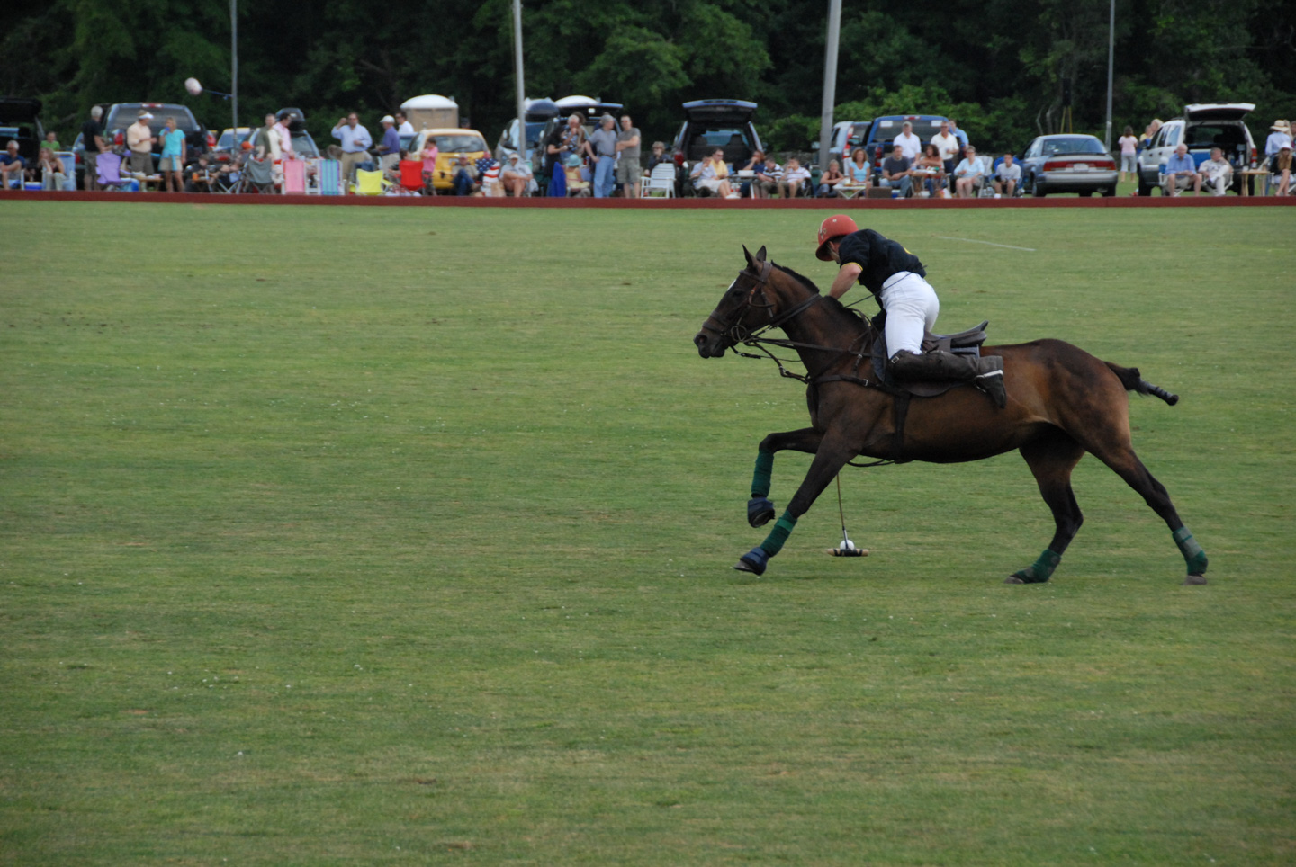 Newport Polo Match action
