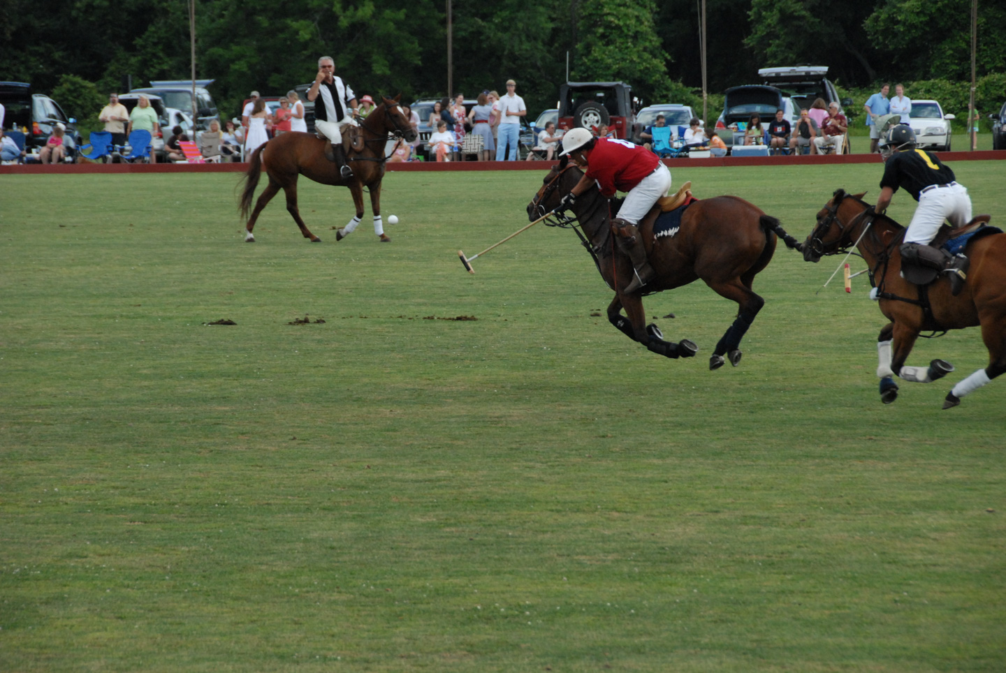 Newport Polo match