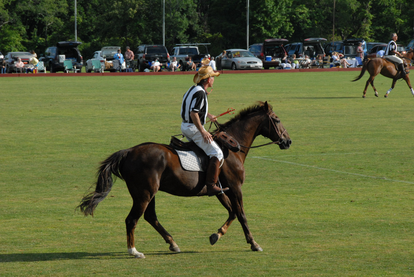 polo referee