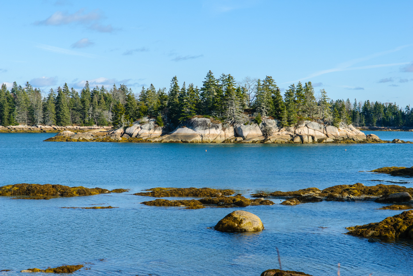 looking at land across water, taken at Edgar Tennis Preserve on Deer Isle