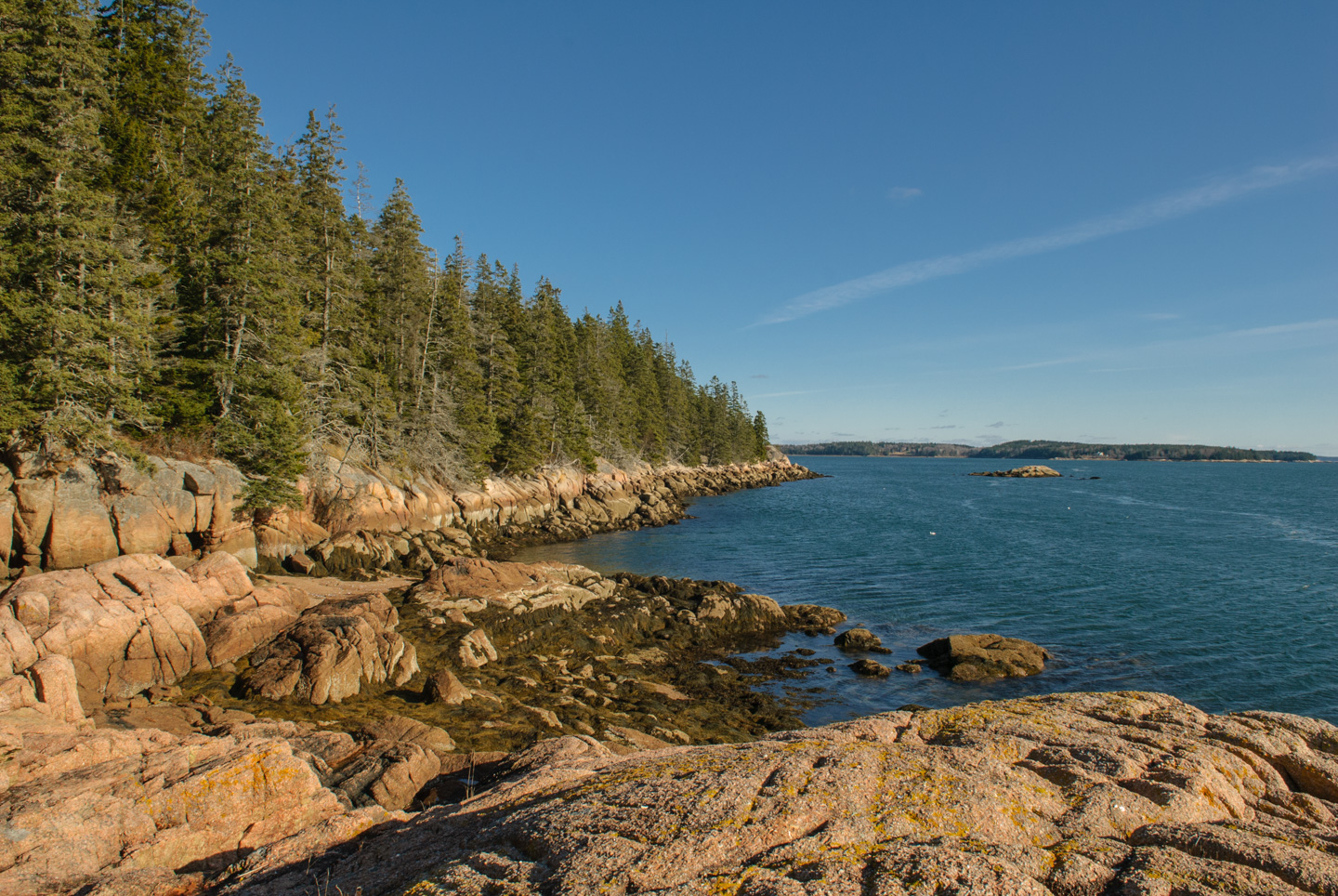 Water scene, taken at Edgar Tennis Preserve on Deer Isle